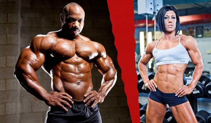 Best Bulking and Cutting Cycle – Adherence to Safe Practice